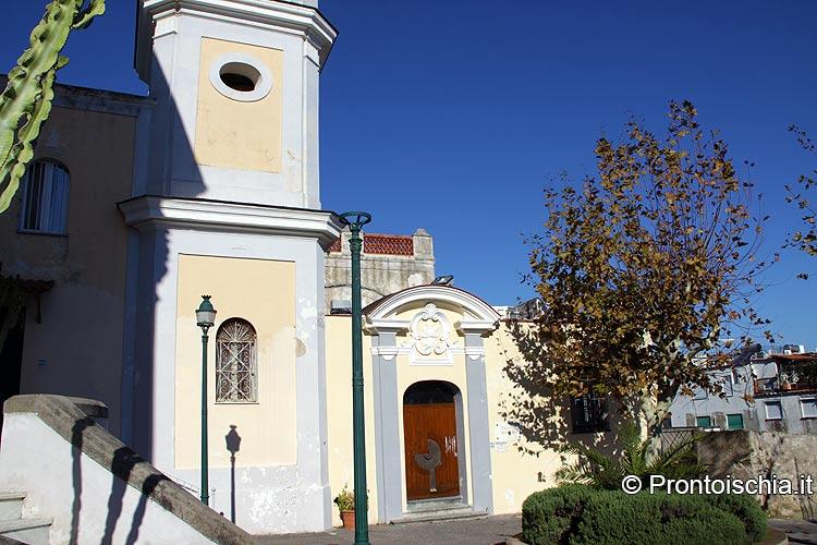 Ischia: avvelenati i due platani davanti alla Biblioteca Antoniana