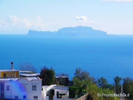 Offerte Hotel Capri Mezza Pensione