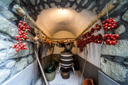 Andar per cantine, a Ischia percorsi alla scoperta del vino