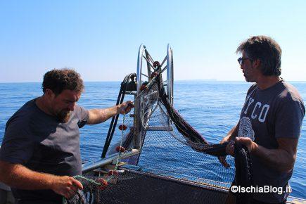 A pesca di lampughe con Gennaro